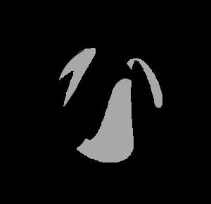 opetushallitus rahoittaa hanketta visuaalinen logo